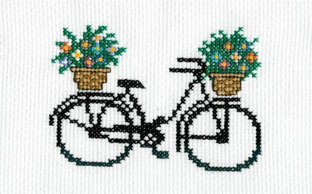 bicicleta_medium.jpg
